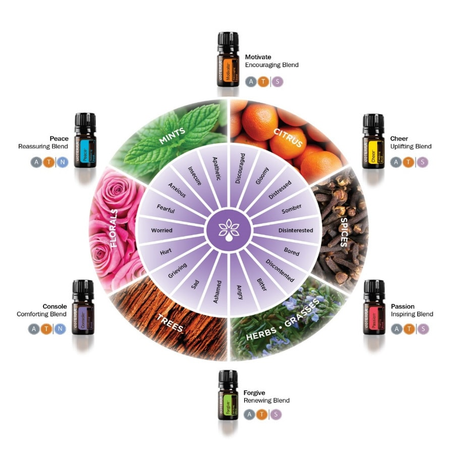 doterra-emotional-wheel-complete-01
